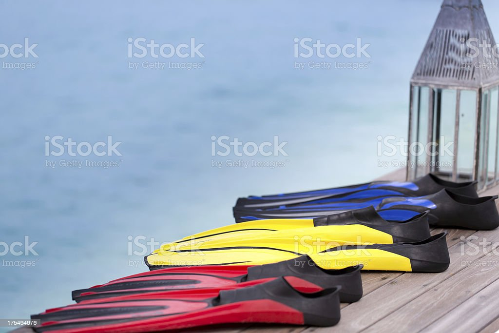 Colored Fins stock photo