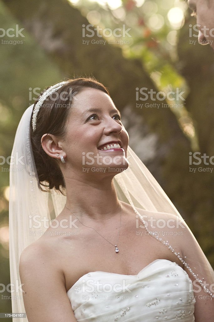 Colored Image of Newlyweds The Bride is Featured Left royalty-free stock photo