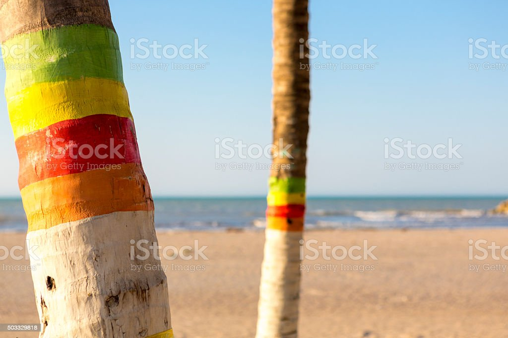 Colored palm trees and beach in Colombia stock photo