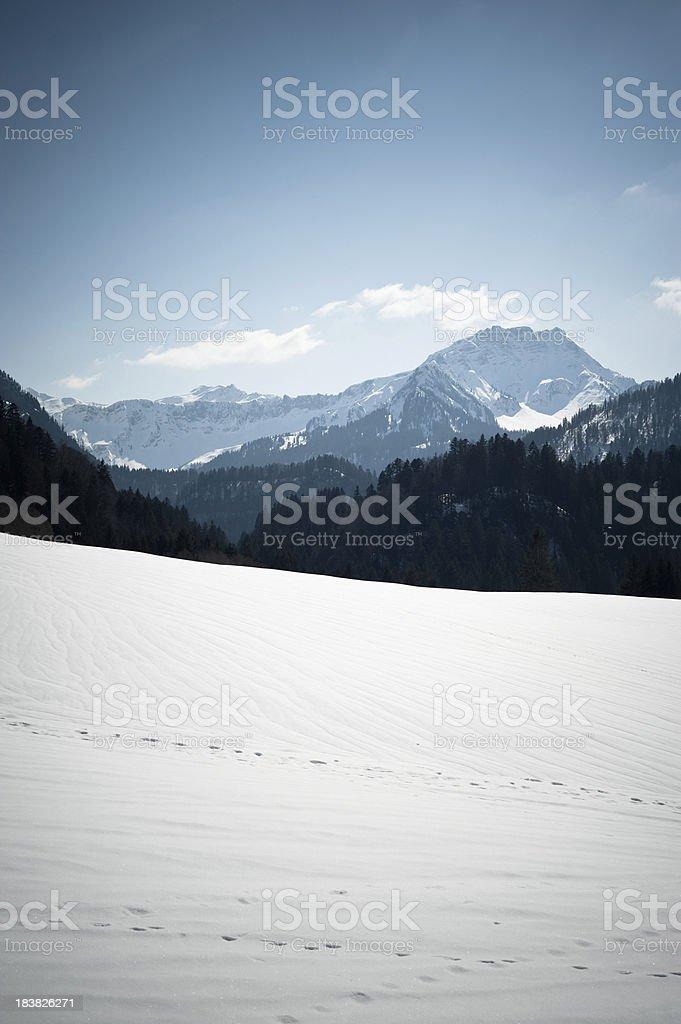 Colored Winter Landscape stock photo