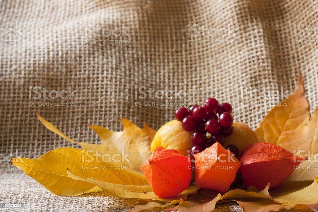 Colorful autumn arrangement royalty-free stock photo