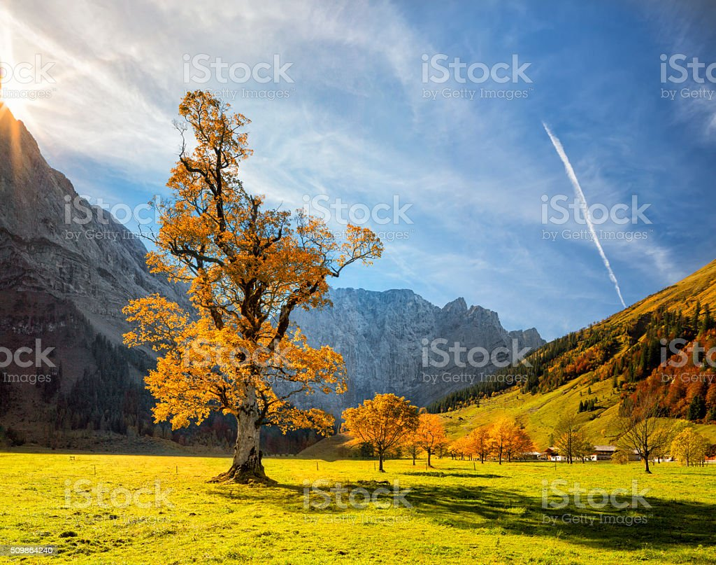 Colorful autumn at Ahornboden in Karwendel Alps stock photo