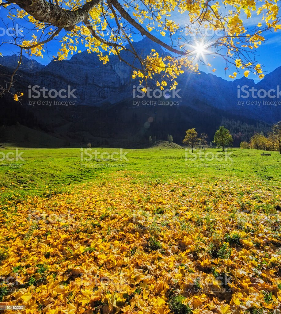 Colorful autumn at Ahornboden in Karwenel Alps stock photo