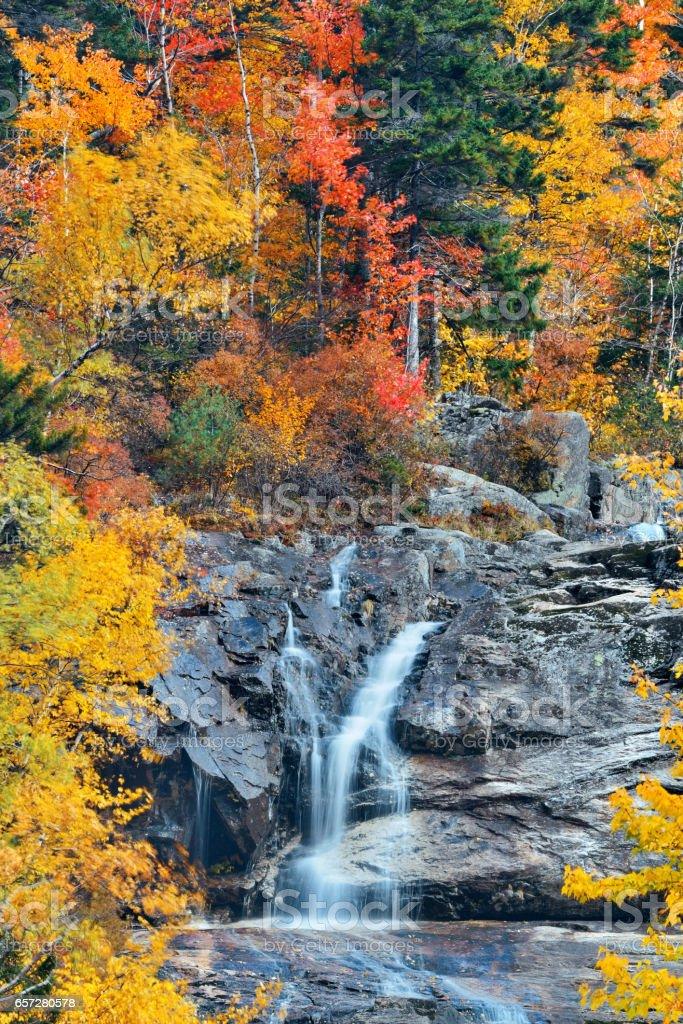 Colorful Autumn creek stock photo
