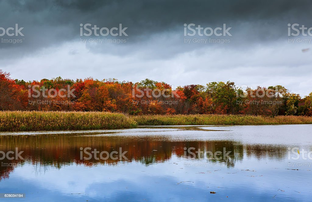 colorful autumn forest lake river sky clouds Cirrus stock photo