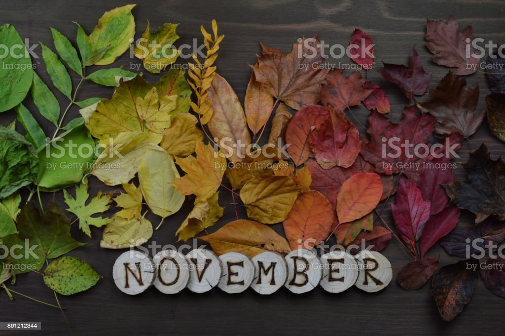 colorful autumn leaves in color gradient on brown wood with the word...