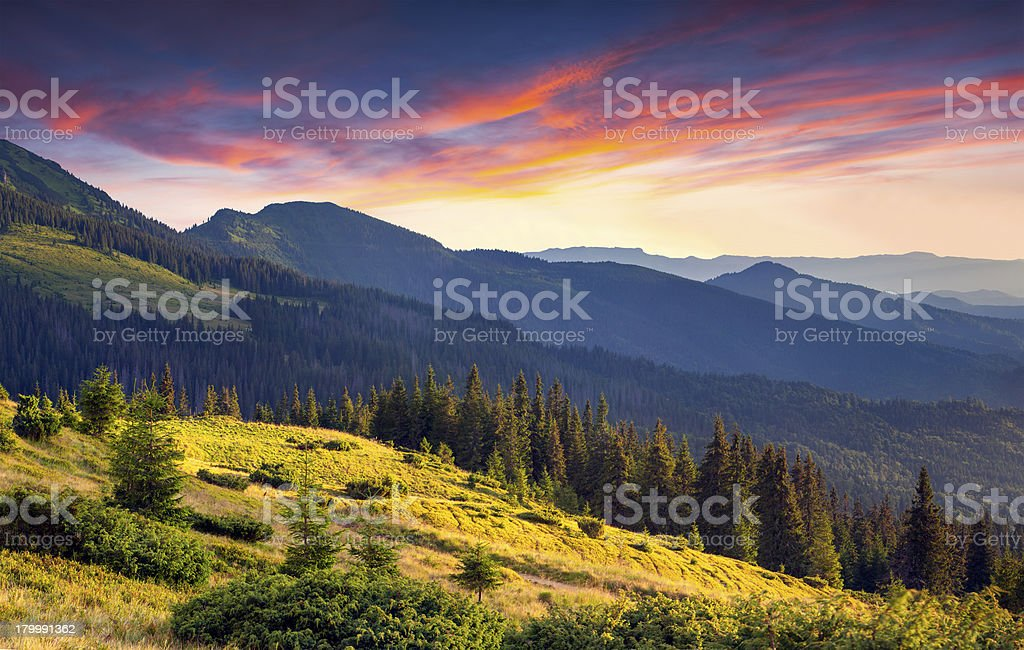Colorful autumn morning in the mountains royalty-free stock photo