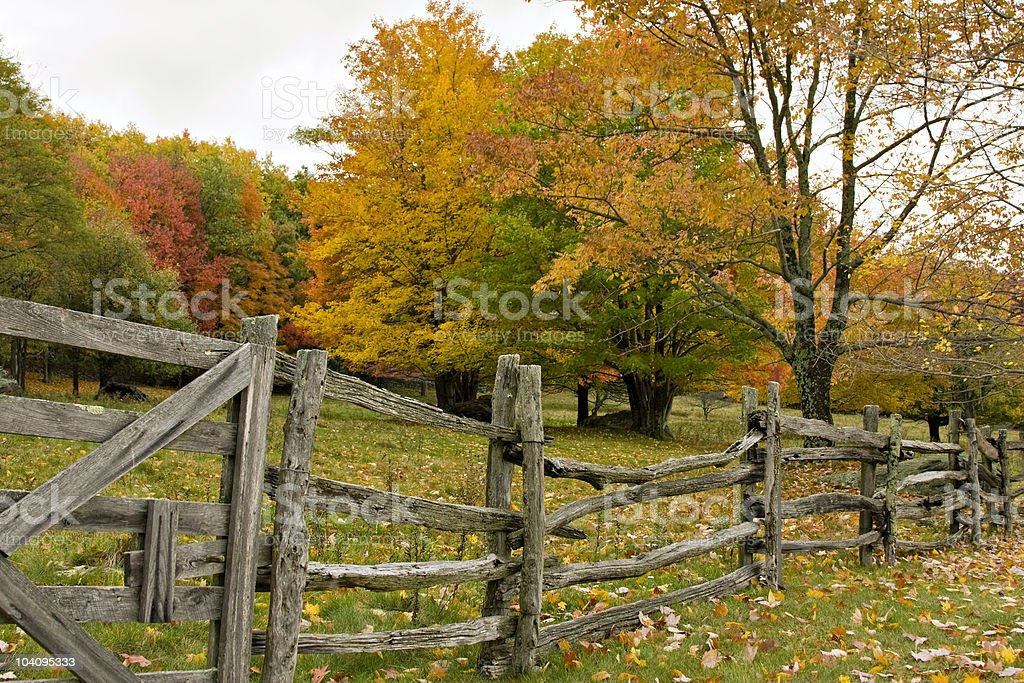 Colorful Autumn Pasture With Fence stock photo