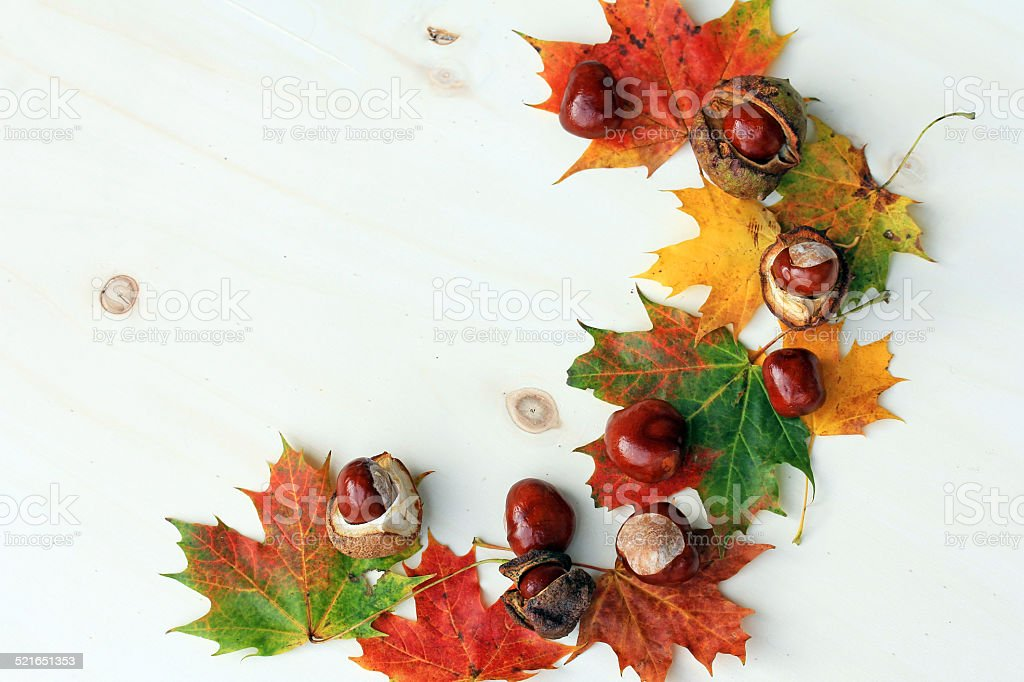 Colorful autumn stock photo