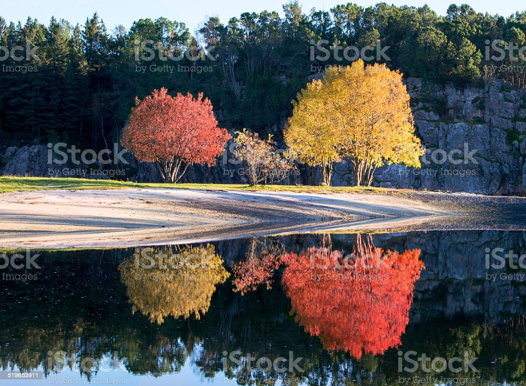 Otoño colorido reflejo foto de stock libre de derechos