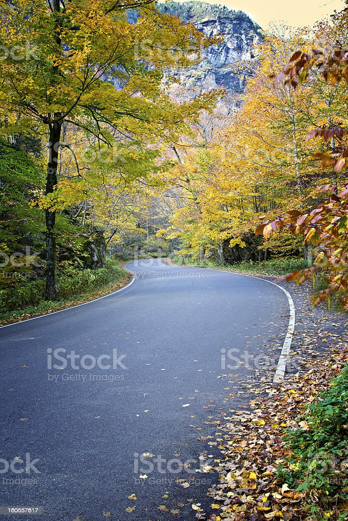 Colorful Autumn road royalty-free stock photo