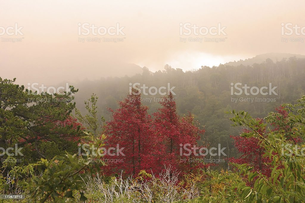 Colorful Autumn Scenic in Shenandoah National Park (Virginia, USA) royalty-free stock photo