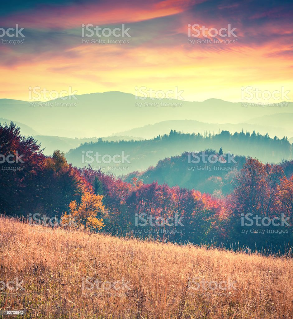 Colorful autumn sunrise in the Carpathian mountains stock photo