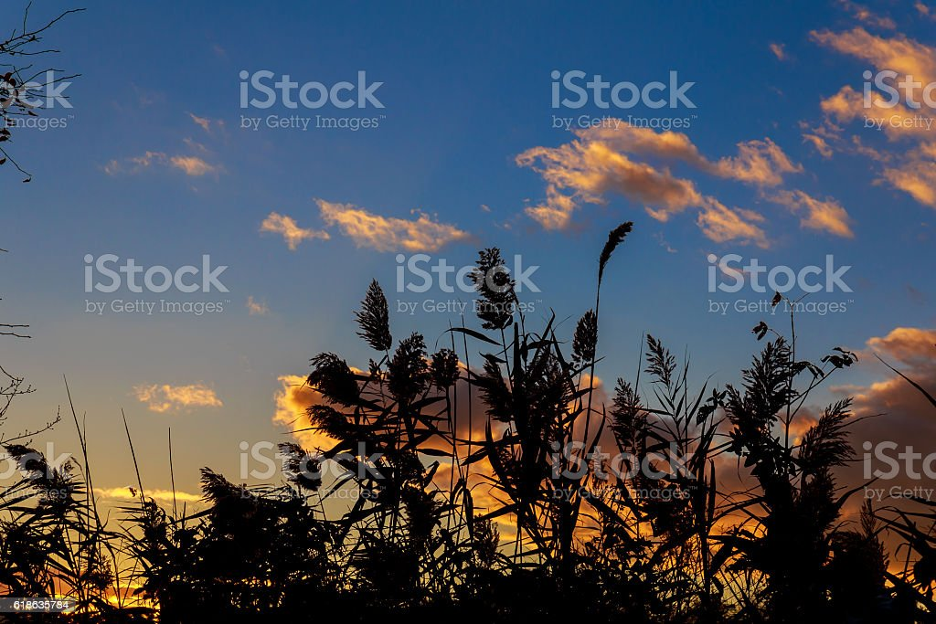 Colorful autumn sunset with sun rays coloring the clouds stock photo