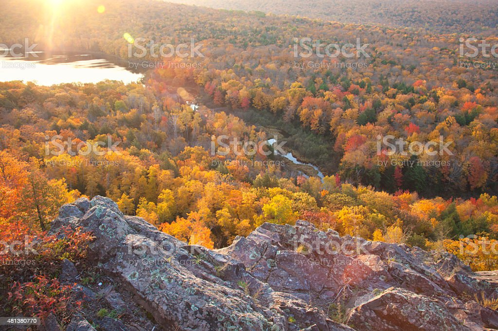 Colorful autumn trees in early morning light stock photo
