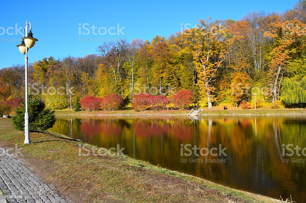 Colorful autumn trees with water reflection royalty-free stock photo