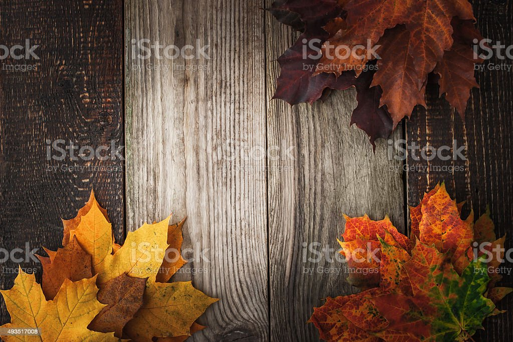 Colorful autumnal maple leaves on the wooden table horizontal stock photo