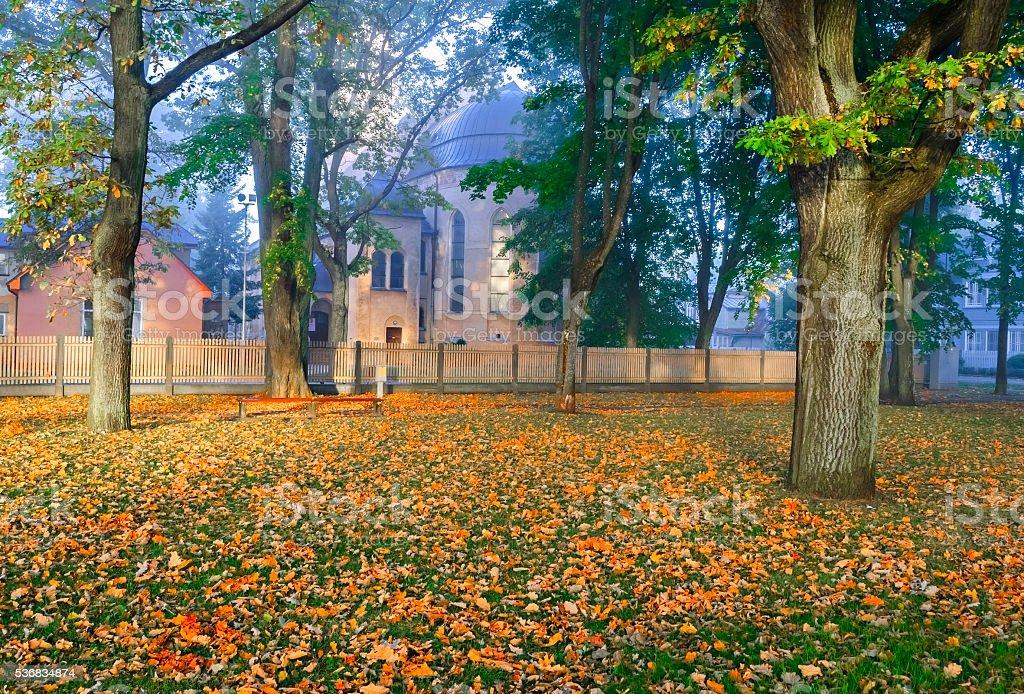 Colorful autumnal park, Dubulti, Latvia, Riga stock photo
