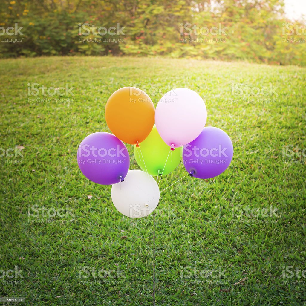 colorful balloons sunset tone on green  grass background stock photo