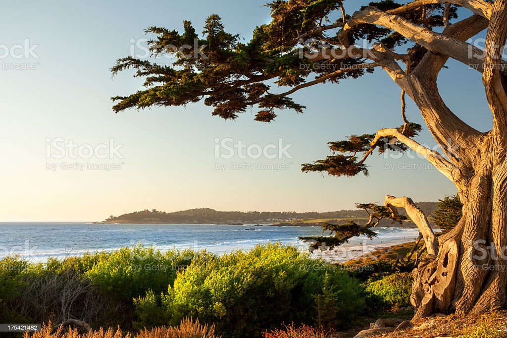 Colorful beachfront in Carmel-by-the-Sea stock photo