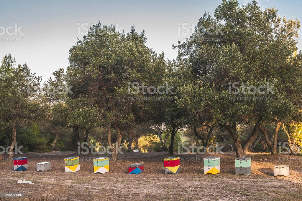 Colorful beehives stock photo