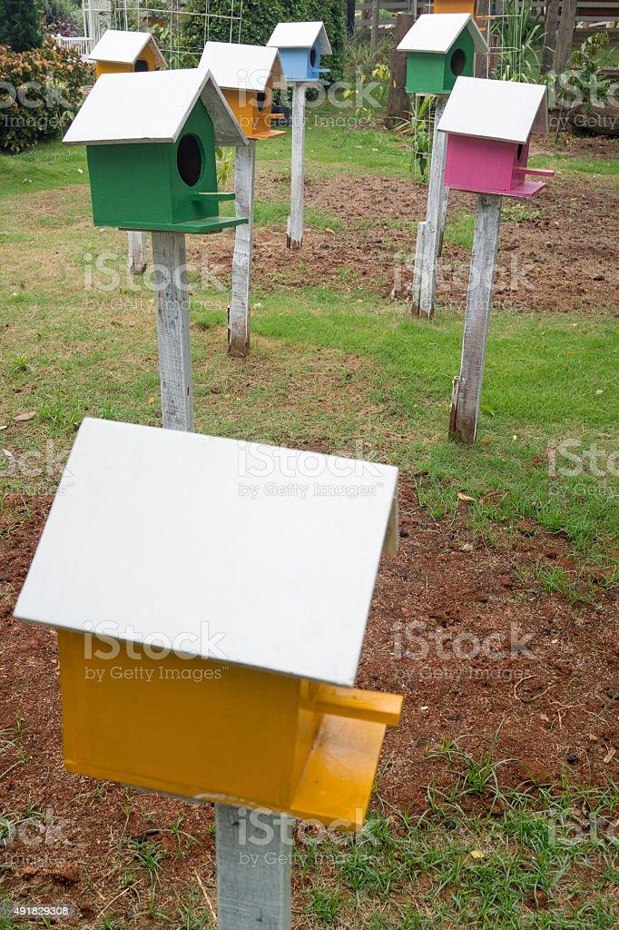 Oiseaux colorés maisons dans le jardin photo libre de droits