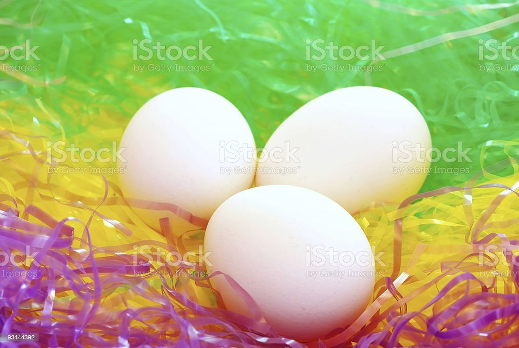colorful birds nest with eggs royalty-free stock photo