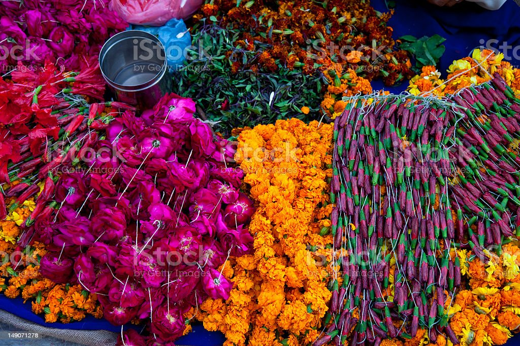 Colorful bouquet of flowers next to each other royalty-free stock photo