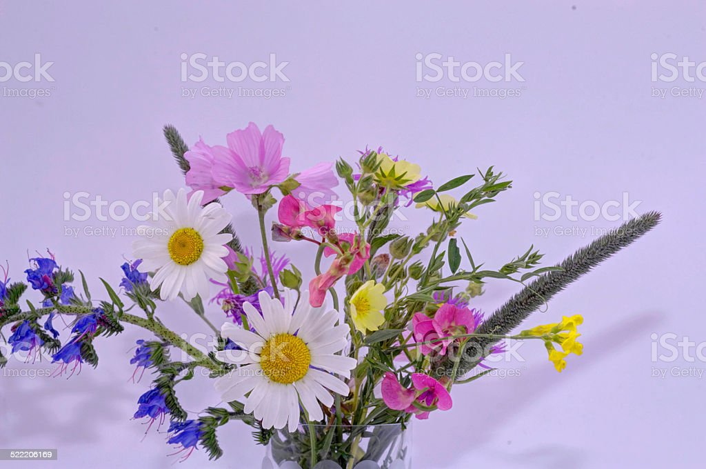 colorful bouquet of wildflowers stock photo