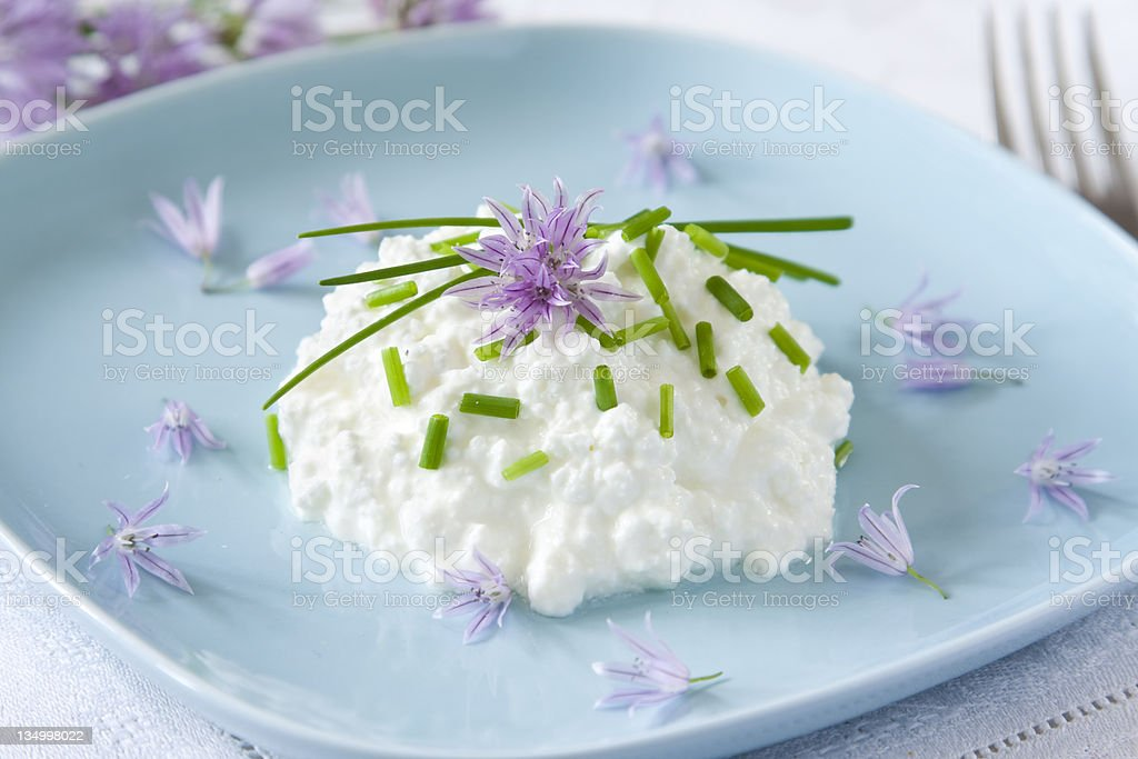 colorful breakfast - cottage cheese, chive flower and chive green stock photo