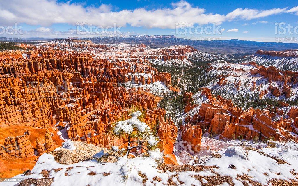 Colorful Bryce canyon national park, Utah stock photo