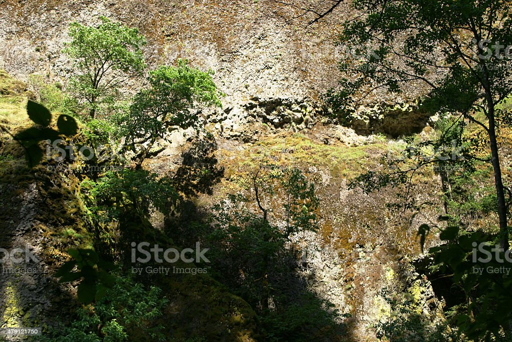 Colorful Cliff Face with Trees stock photo