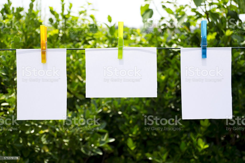 Colorful Clothespins and Notepads in Nature, Garden stock photo