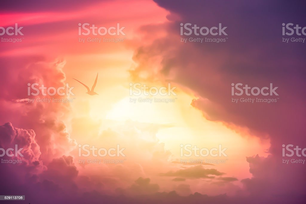 Colorful clouds on the dramatic sunset sky stock photo