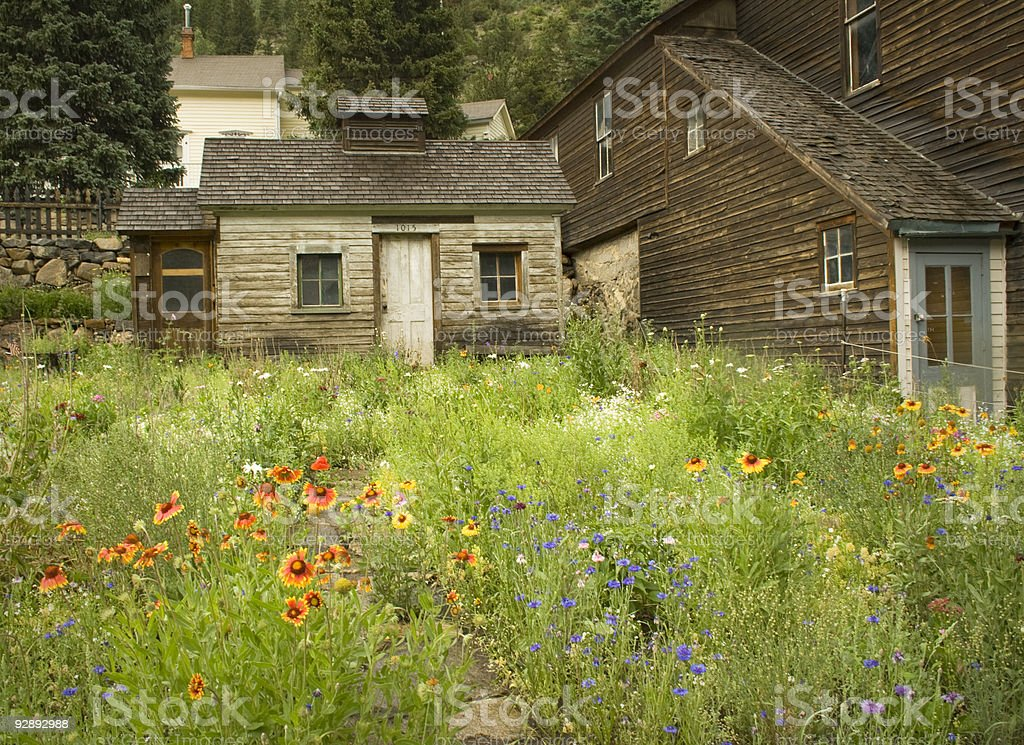 Colorful Colorado mining town buildings with sumer wildflowers. royalty-free stock photo