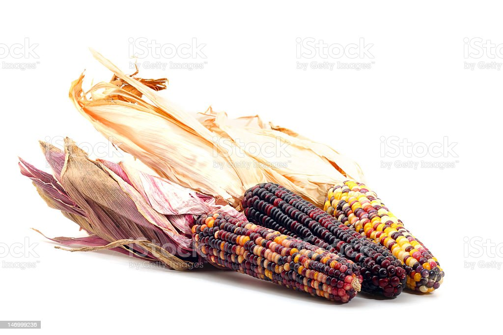 Colorful corn isolated on white royalty-free stock photo