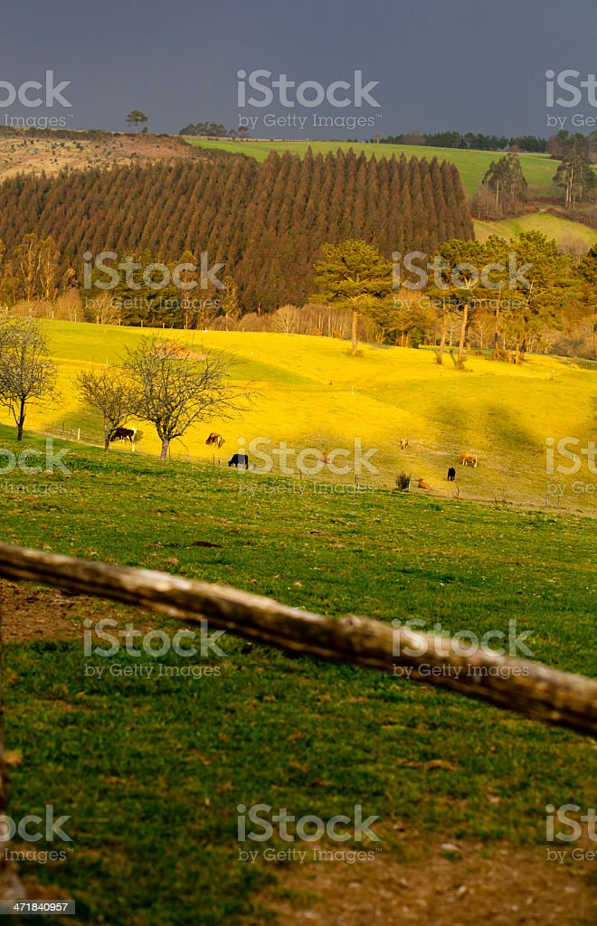 Colorful countryside royalty-free stock photo