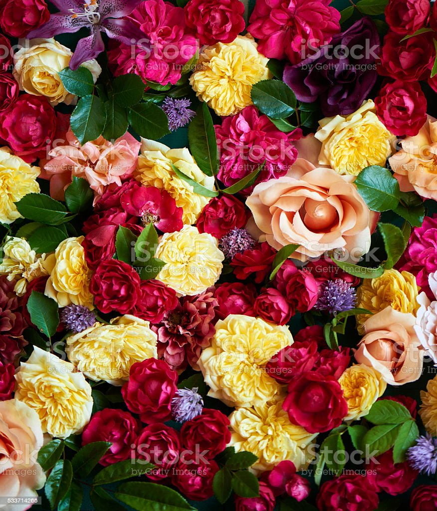 colorful decoration with roses and other flowers tight together stock photo