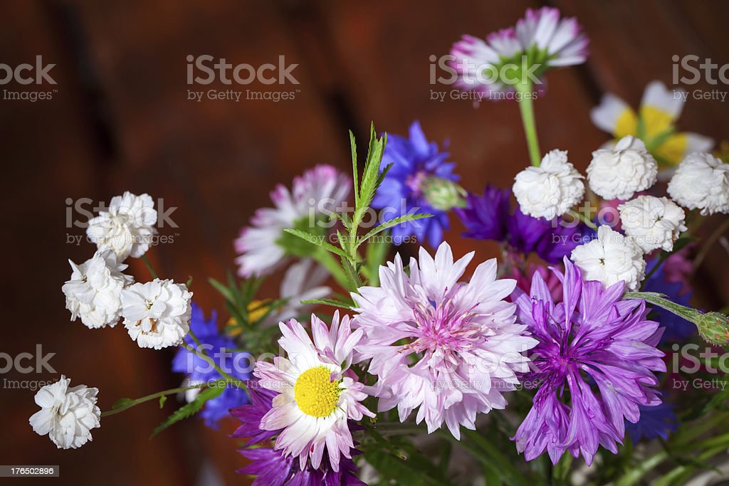 Colorful different flowers summer bouquet royalty-free stock photo