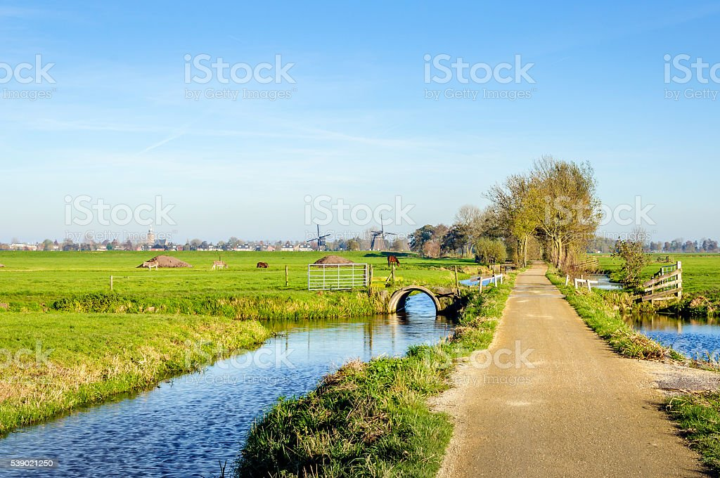 Colorful Dutch polder landscape in autumn stock photo