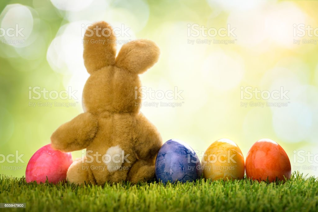 Colorful easter eggs and rabbit or bunny on green grass over bokeh stock photo