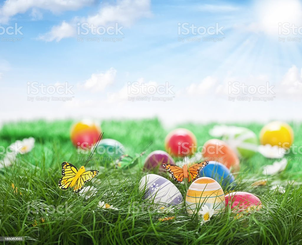 Colorful Easter Eggs Decorated on Green Grass stock photo
