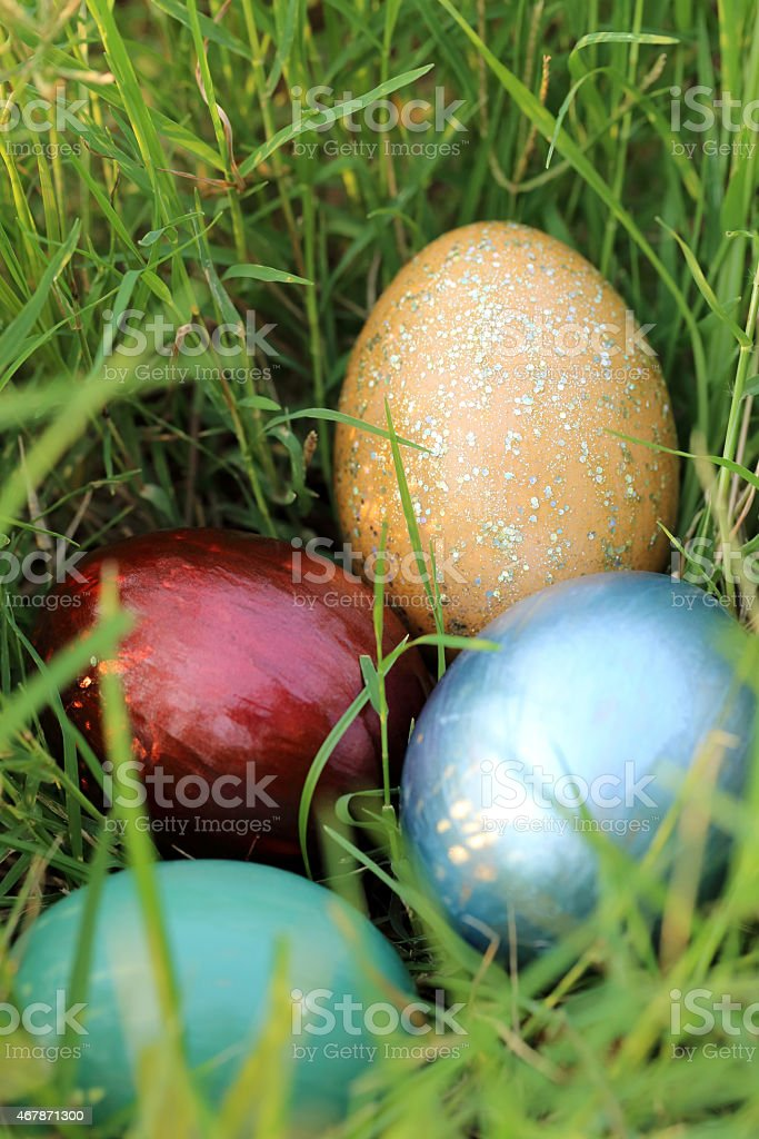 Colorful easter eggs hidden in dense grasses. stock photo