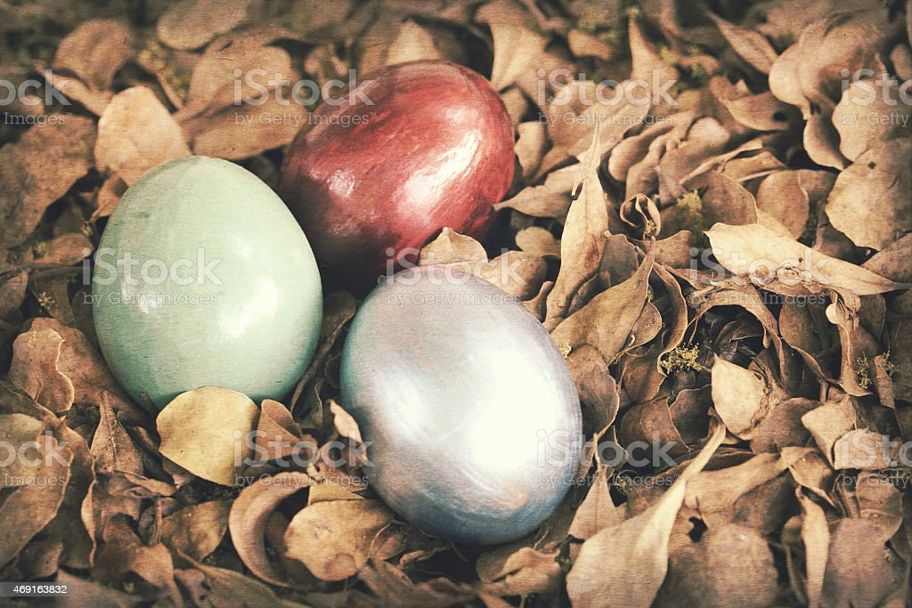 Colorful easter eggs in pile of weathered leaves. stock photo