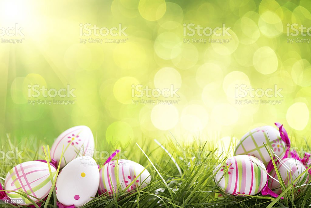 Colorful easter eggs on illuminated background with copy space royalty-free stock photo