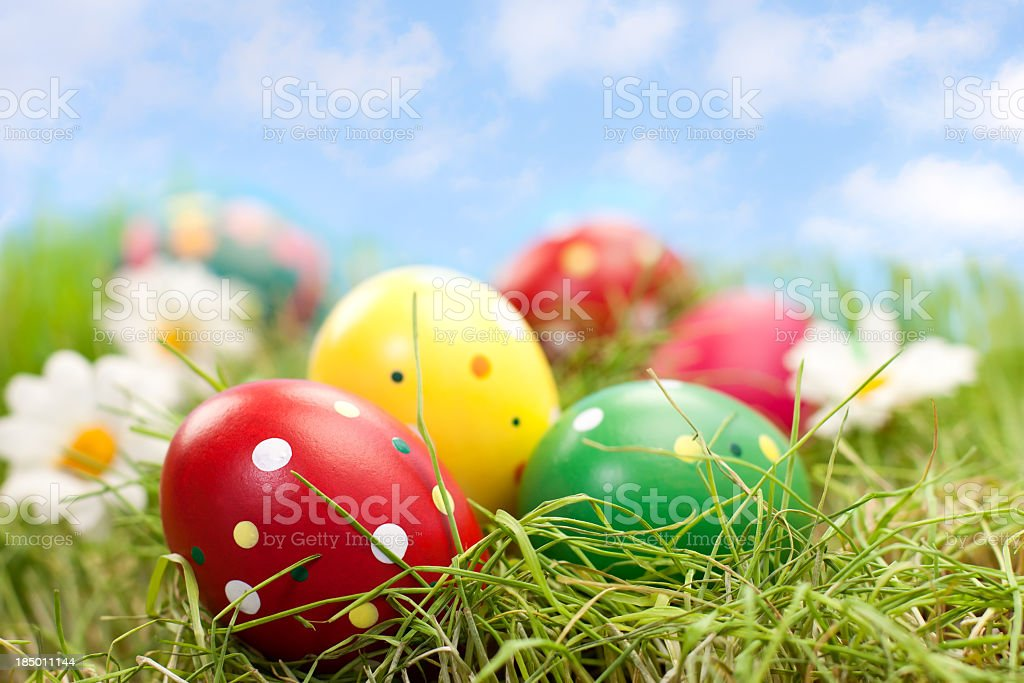 Colorful Easter Eggs stock photo