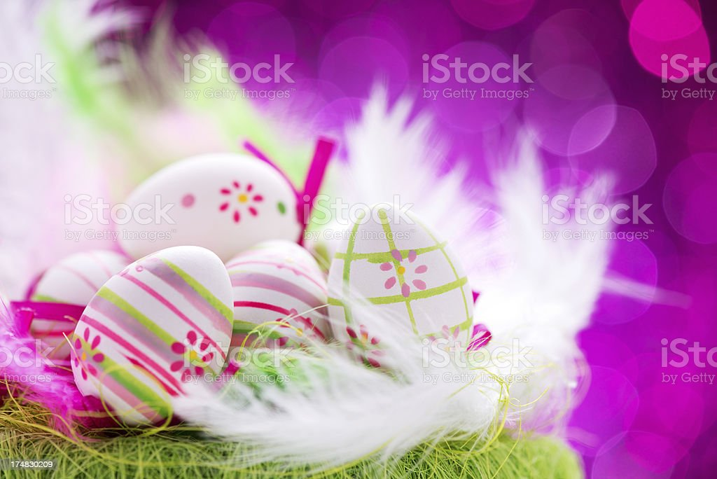 Colorful easter eggs with feathers on illuminated background royalty-free stock photo