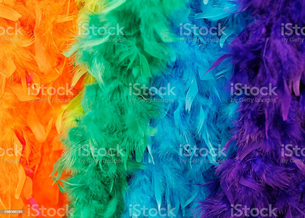 Colorful feathered boas stock photo