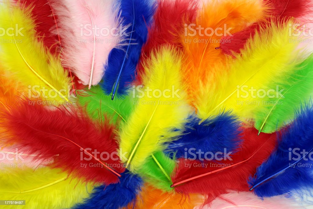 Colorful  feathers  background stock photo