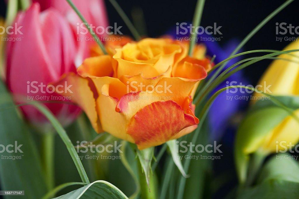 Bunte Blumen Blumenstrauß Lizenzfreies stock-foto